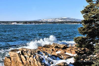 Photograph - Crashing Acadia Waves by Debbie Stahre