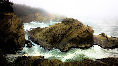 Photograph - Crashing Surf Shore Acres by Pacific Northwest Imagery