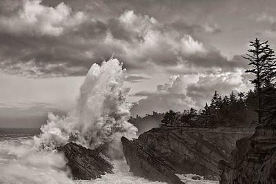 Crashing Waves At Shore Acres Art Print by Patricia Davidson