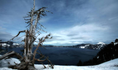 Crater Lake View Photograph - Crater Lake by Bonnie Bruno