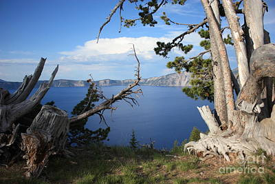 Photograph - Crater Lake Perspective by Carol Groenen