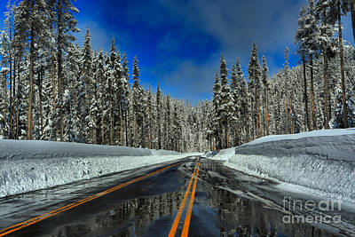 Photograph - Crater Lake Scenic Road by Adam Jewell