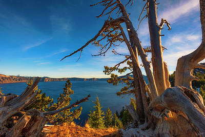 Photograph - Crater Lake Early Dawn Scenic Views Iv by Dee Browning