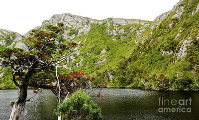 Photograph - Crater Lake Tasmania by Lexa Harpell