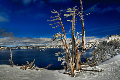 Photograph - Crater Lake Winter Blues by Adam Jewell