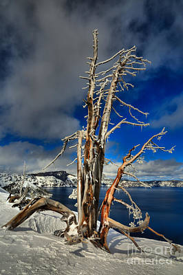 Photograph - Crater Lake Winter Portrait by Adam Jewell