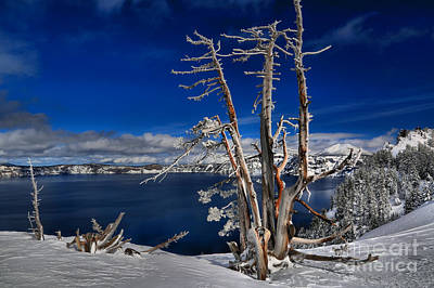 Photograph - Crater Lake Winter Scene by Adam Jewell