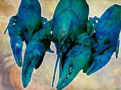 Crawfish Blues Art Print by Stranger  Mojo