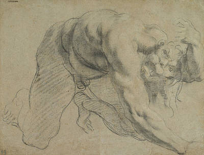 Drawing - Crawling Male Figure  by Annibale Carracci