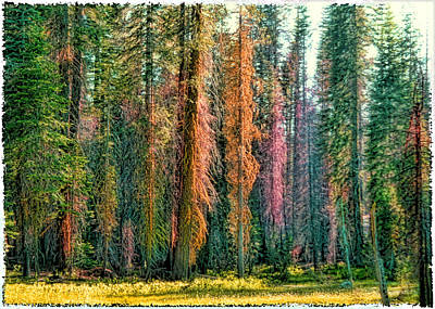 Crayon Forest Art Print by Michael Cleere