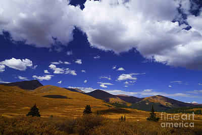 Photograph - Crazy Blue Sky by Barbara Schultheis