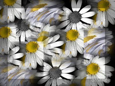 Crazy Daisys Art Print by Karen Lewis