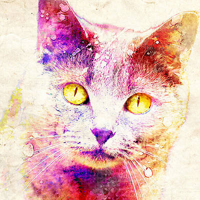 Watercolor Pet Portraits Mixed Media - Crazy For Cats  by Stacey Chiew