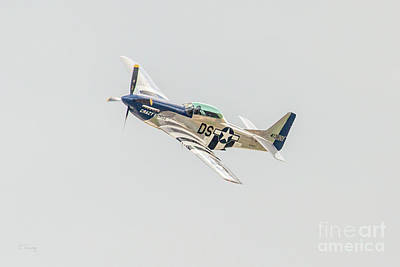 Photograph - Crazy Horse P-51 by Rene Triay Photography