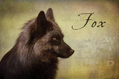 Digital Art - Crazy Like A Fox by Nicole Wilde