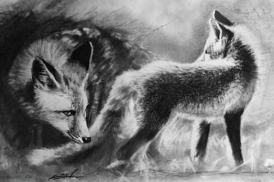 Fog Mist Drawing - Circle Of Light -fox by Susie Gordon