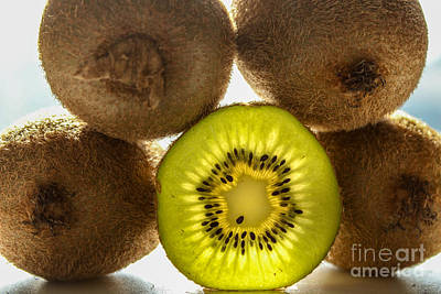 Creative Kiwi Light Art Print