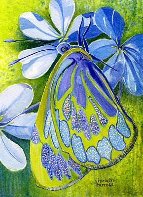 Chakra Painting - Creativity Butterfly by Charlotte Garrett