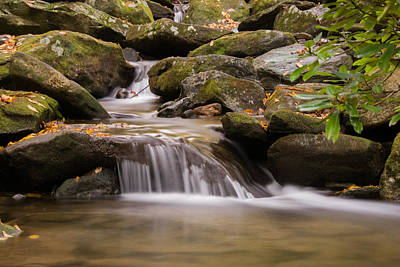 Photograph - Creek 1 by Joye Ardyn Durham