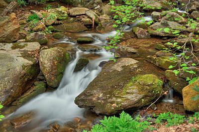 Photograph - Creek 10 by Joye Ardyn Durham