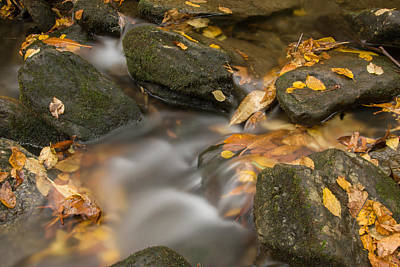 Photograph - Creek 3 by Joye Ardyn Durham