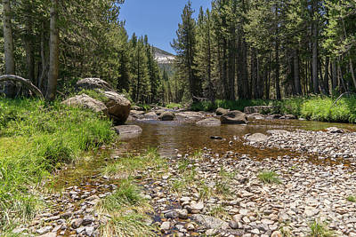 Photograph - Creek Along Tioga Pass Yosemite California Dsc04301 by Wingsdomain Art and Photography