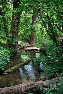 Photograph - Creek And Wood At Roman Nose State Park #1 by Richard Smith
