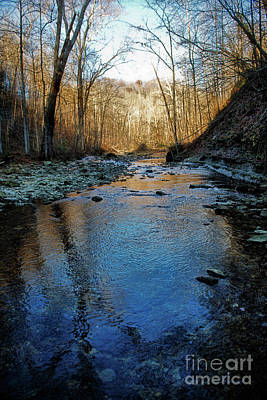 Photograph - Creek At Dusk by David Arment