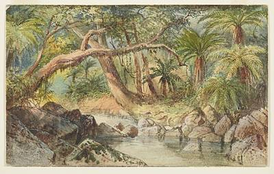 Creek At Holmes Bay, Banks Peninsula Fuschia Trees, 1866  , By Nicholas Chevalier Art Print by Celestial Images