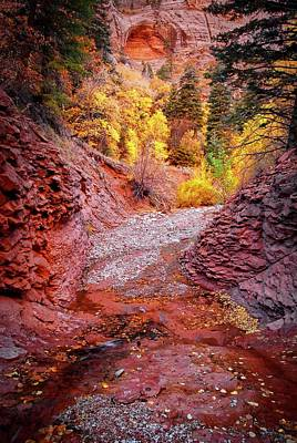 Photograph - Creek Bed, Taylor Creek, Zion National Park by Flying Z Photography by Zayne Diamond