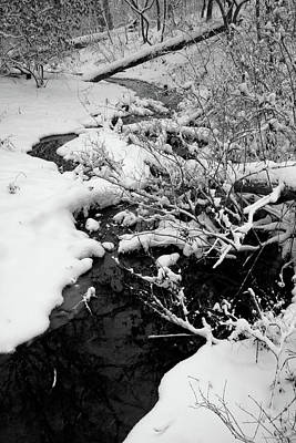 Photograph - Creek Cloaked In Winter by Scott Kingery