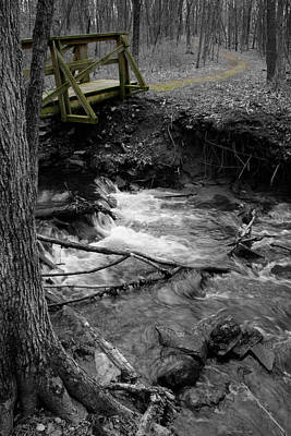 Photograph - Creek Crossing by Dylan Punke