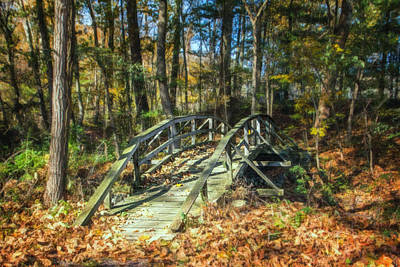 Woodland Trail Photograph - Creek Crossing by Tom Mc Nemar