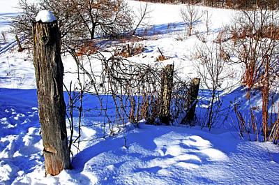 Photograph - Creek Fenceline by Debbie Oppermann
