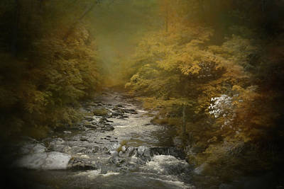 Photograph - Creek In The Cove by Jai Johnson