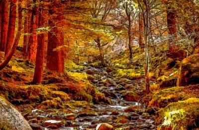 Creek In The Forest L B Art Print by Gert J Rheeders