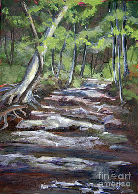 Creek In The Park Art Print