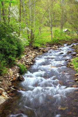 Photograph - Creek In The Springtime by Jill Lang