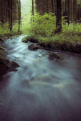 Photograph - Creek In The Woods by Alexander Kunz