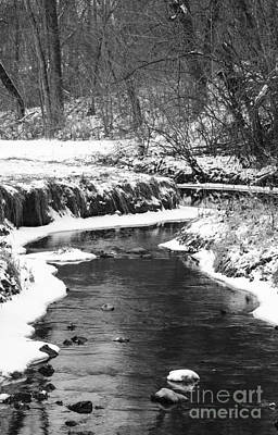 Photograph - Creek In The Woods In Winter by Tamara Becker