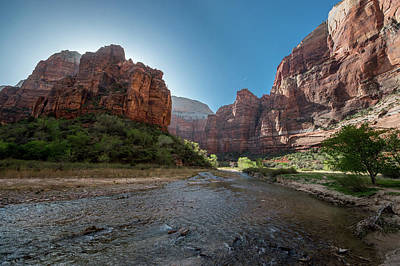 Photograph - Creek In Zion National Park by Mike Shaw