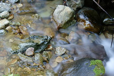 Creek On Mt Tamalpais Art Print