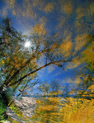 Photograph - Creek Reflections by Cora Wandel