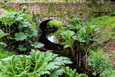 Creek Scene - Blarney Castle Art Print