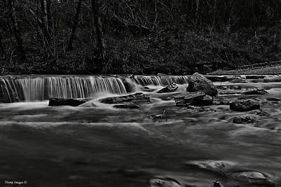 Photograph - Creek Watching by Wesley Nesbitt
