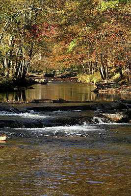 Photograph - Creek Water Flowing Through Woods In Autumn by Emanuel Tanjala