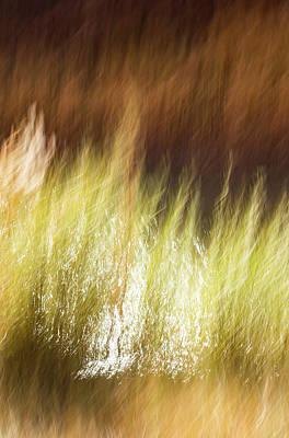 Photograph - Creekside by Deborah Hughes