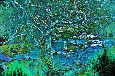 Verde River Photograph - Creekside by Helen Carson