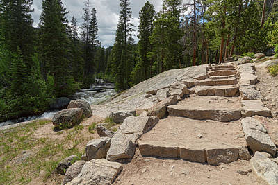 Photograph - Creekside Hiking Path by James BO Insogna