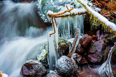 Photograph - Creekside Icicles by Jason Brooks